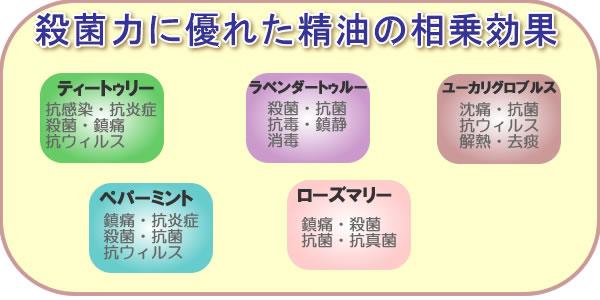 protect-seiyu600300